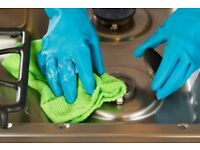 Professional House Cleaning Service with plenty of experience
