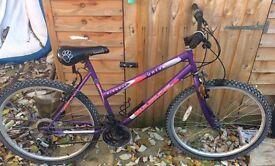 Universal Woman's bike