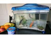 14L MARINA Fish Tank with 3 gold fish and ALL accessories