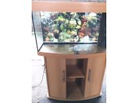 Juwel vision 180 marine tropical cold water fish tank aquarium with setup (delivery/installation)