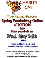Spring Fundraising Auction with Timewells!