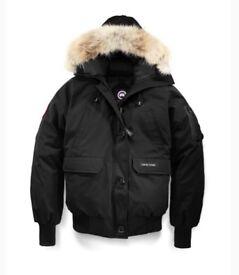 Canada goose chilliwack bomber in black