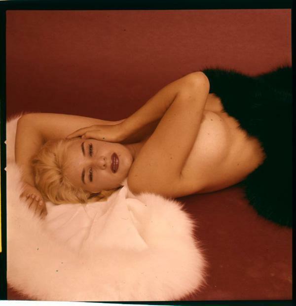 June Wilkinson Breathtaking Glamour Model Exotic Pin Up Original Transparency