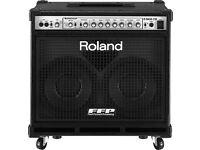 Roland D Bass 2x10 combo
