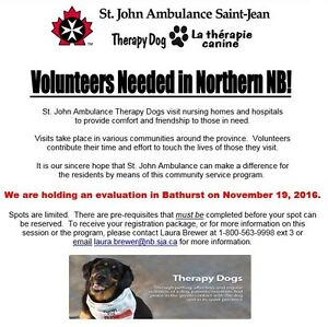 Volunteers needed in Bathurst NB