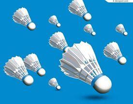 trevs friendly badminton club