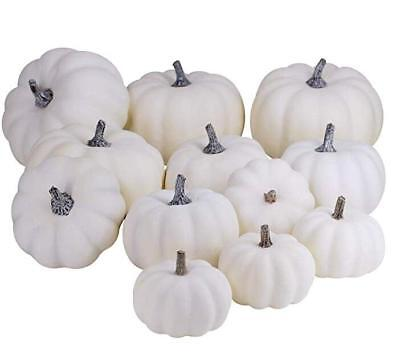 12 Pcs Halloween Harvest White Artificial Pumpkins Fall Thanksgiving Decorative](Harvest Halloween)