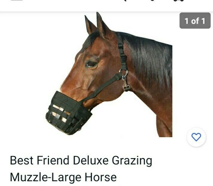 Best Friend Deluxe Grazing Muzzle-Large Horse