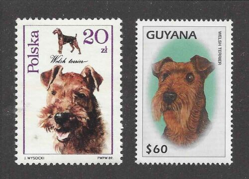 Dog Art Photo Head Study Portrait Postage Stamp Collection WELSH TERRIER 2 x MNH