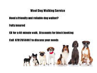 Woof Dog Walking Service serving Hessle, Anlaby, Hull and the West Hull villages