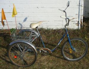 3 wheeled adult trike