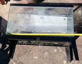 Complete fish tank x 2