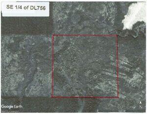 SE ¼ of DL 756 Cariboo District - FOREST LAND