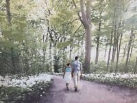 PICTURE LARGE WALL CANVAS BRAND NEW