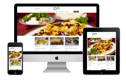 Web design - Online Stores and Marketing Services