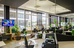 Coworking space and open plan desk space in Dickson, Canberra! Dickson North Canberra Preview