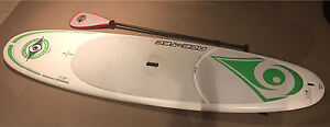 BIC Ace-Tec 9ft 6 Stand-Up Paddle Board (SUP) Cameron Park Lake Macquarie Area Preview