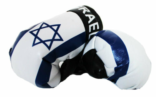 Mini Boxing Gloves - Flag of Israel - Jewish Star of David
