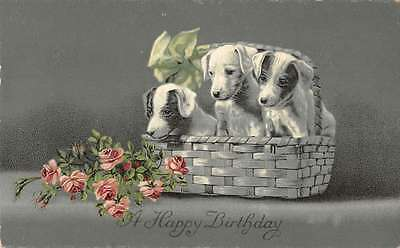 A Happy Birthday puppies in white basket with pink roses antique pc Z19703