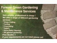 Forever Green Gardening