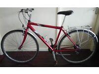 Men's Raleigh Pioneer Road/Hybrid City Bike