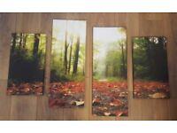 Canvas Picture Photo Art - Nature (Set of 4)