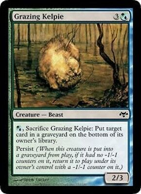 4x MTG: Grazing Kelpie - Multi Common - Eventide - EVE - Magic Card