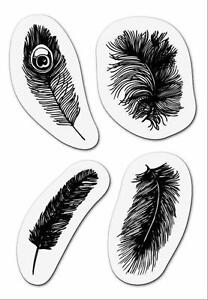 Clear Rubber Stamps - Feathers /  Peacock Feather  - NEW IN