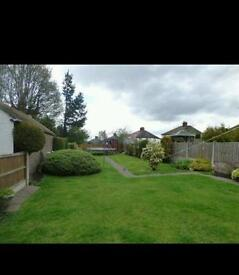 3 bed semi detached house for rent in Dresden!!!
