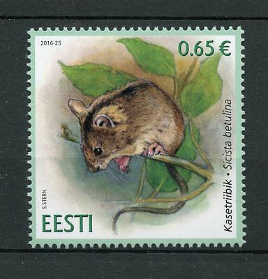 Estonia 2016 MNH Fauna Northern Birch Mouse 1v Set Wild Animals Rodents Stamps