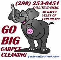 CALL GO BIG FOR CARPET AND UPHOLSTERY STEAM CLEANING