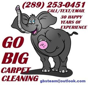 CARPET CLEANING AT ITS' FINEST CALL GO BIG STEAM CLEANING TODAY