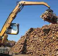 Experienced forestry equipment operator