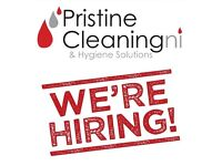 Cleaning Team Leader required