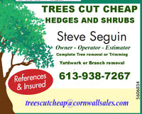 tree trimming hedges and shrubs