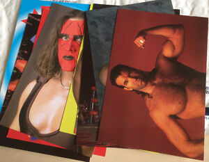 1998 WCW/NWO Panini Photo Cards