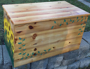 Painted Pine treasure Chest Or Storage Bench
