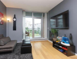 Beautiful One Bedroom Condo Available February 15th, 2019!