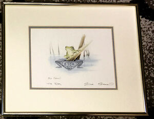 Sue Coleman Framed Print- The Frog