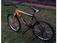 "Discovery adult men's bike 26"" wheels black yellow"
