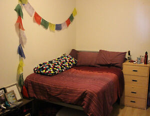 Downtown Montreal July & August Sublet