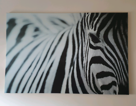 Large zebra canvas /Wall picture 120x80 paid 45£
