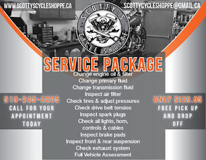 HD BIG TWIN SERVICE PACKAGE