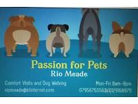 'Passion for Pets' Comfort Visits and Dog Walking.