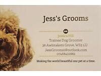 Jess's Grooms