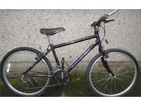 Bike Raleigh encounter 17 inch frame, 18 gears, 26 inch wheels, road tyres Bull Horn handle bar