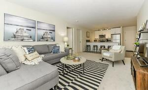 NEW 2BR NW Crystallina Suites | Pet Friendly, & Walk In Closets
