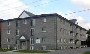 Beautiful 5-bed Apts. - Wifi & AC Included! CALL TODAY! Kitchener / Waterloo Kitchener Area image 5