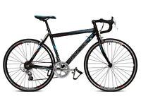 Viking Peloton racing road bike bicycle