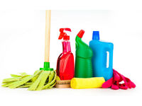 CLEANER/CLEANING SERVICES COMPANY DOMESTIC/CARPET/OVEN/END OF TENANCY/AFTER BUILDERS OXFORD